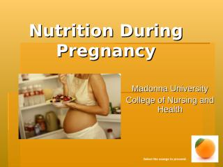 Nutrition_During_Pregnancy_Module_v2-2.ppt