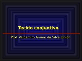 TECIDO CONJUNTIVO_bruno.ppt