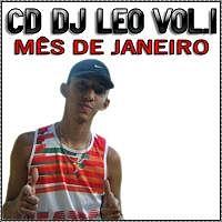 01 - MONTAGEM - SUPER ENTULHADÃO DAS NOVINHA 2012 - DJ LEO.mp3